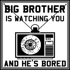 the big brother is watching you and he is bored