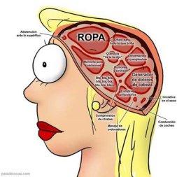 cerebro-femenino